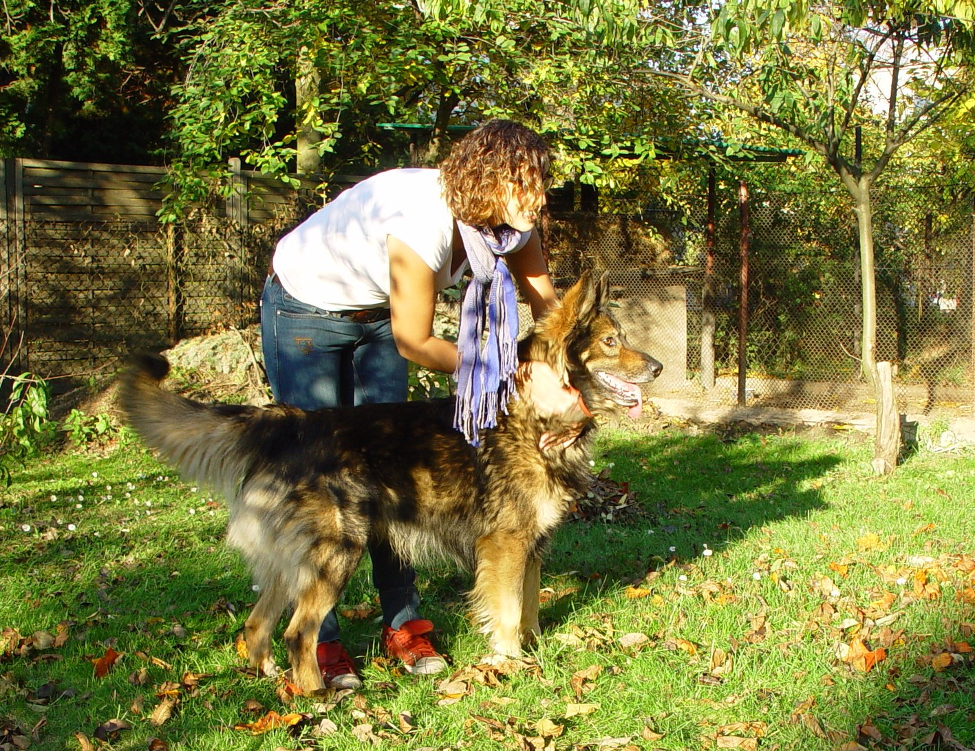 Zdjęcie dziewczyny z psem