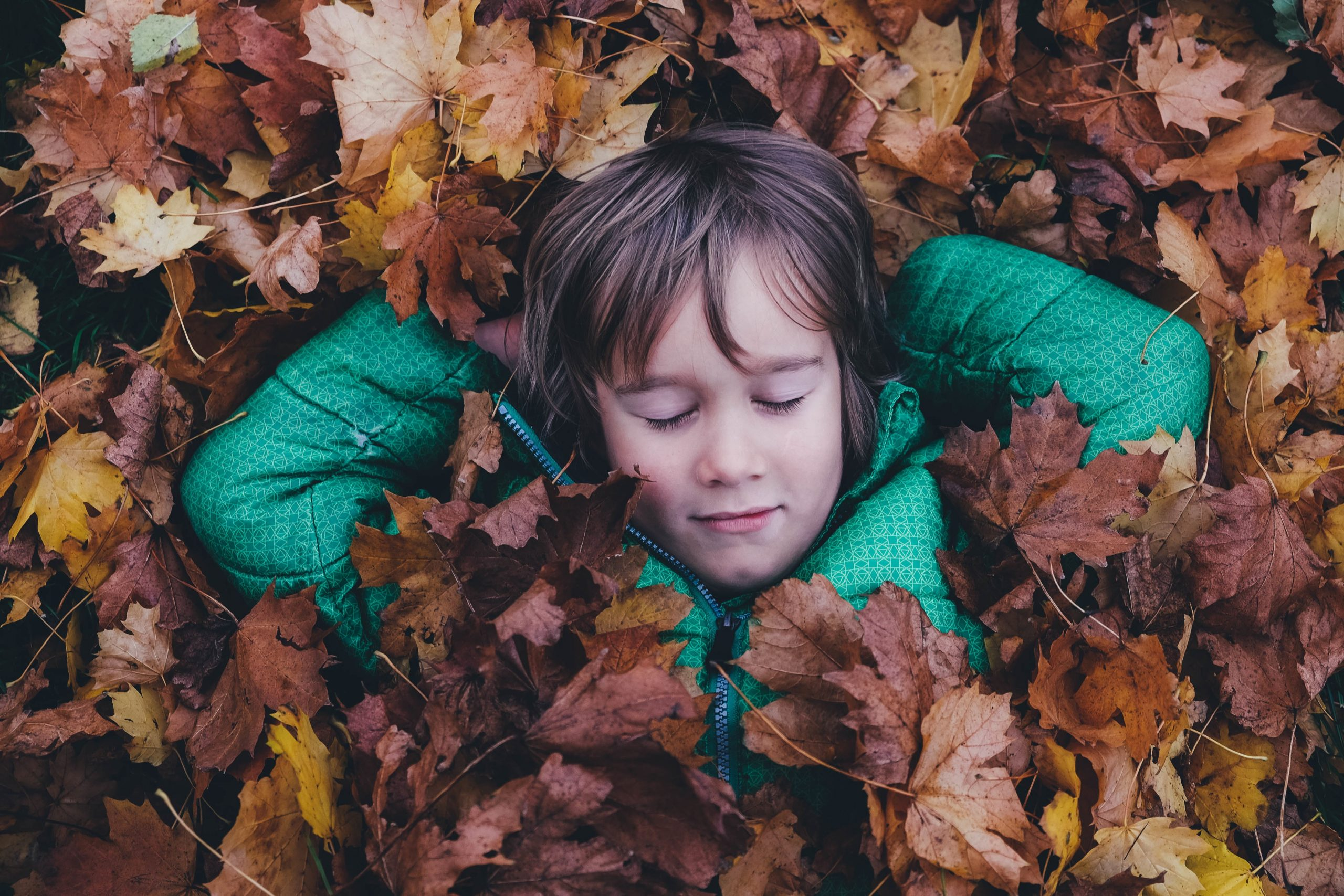 Zdjęcie dziecka śpiącego w liściach